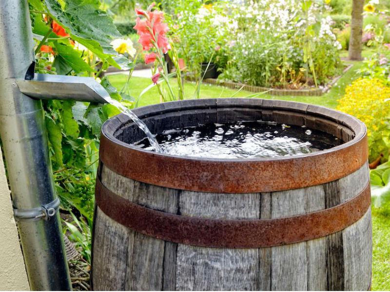 water flowing into a rain barrel